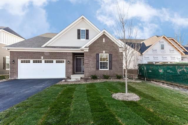 23814 N. Muirfield Lot #13 Drive, Kildeer, IL 60047 (MLS #10951886) :: Jacqui Miller Homes