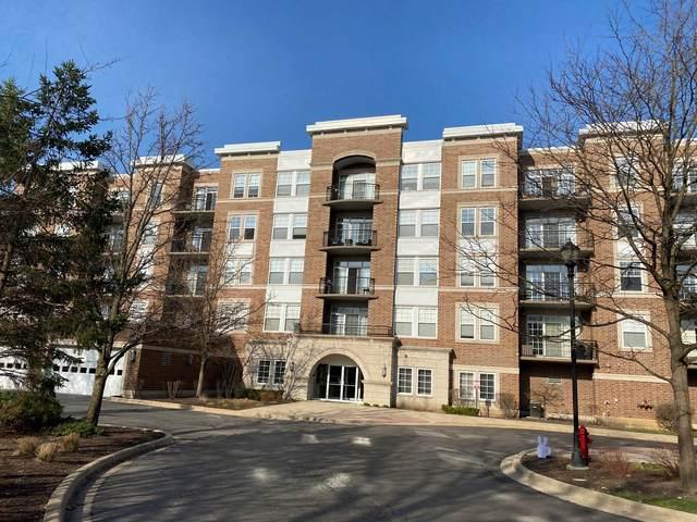 455 W Wood Street #213, Palatine, IL 60067 (MLS #10953942) :: The Dena Furlow Team - Keller Williams Realty