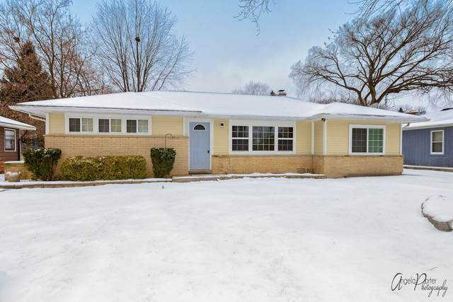 34844 N James Avenue, Ingleside, IL 60041 (MLS #10955554) :: The Wexler Group at Keller Williams Preferred Realty