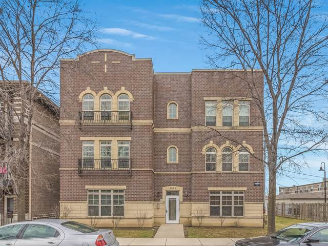 3843 S Langley Avenue #102, Chicago, IL 60653 (MLS #10956631) :: Helen Oliveri Real Estate