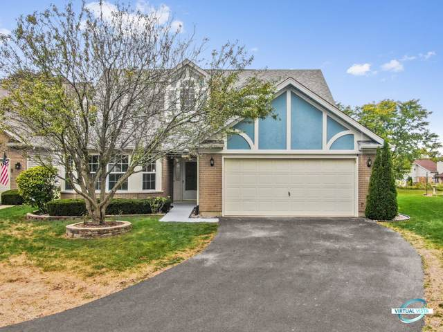 13448 Redberry Circle, Plainfield, IL 60544 (MLS #10961326) :: Jacqui Miller Homes