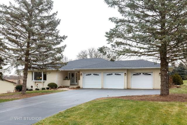 9N795 Hogan Hill, Elgin, IL 60124 (MLS #10961683) :: Jacqui Miller Homes