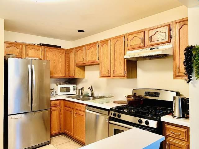 37 Ashburn Court Z1, Schaumburg, IL 60193 (MLS #10962375) :: Jacqui Miller Homes