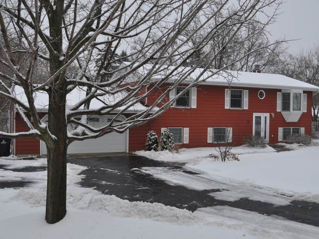 104 Chillems Drive, Spring Grove, IL 60081 (MLS #10962469) :: Jacqui Miller Homes