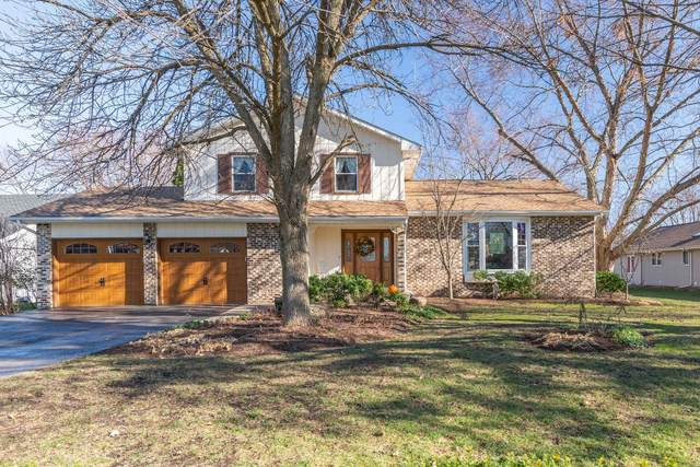 18 Marina Drive, Oswego, IL 60543 (MLS #10964919) :: Jacqui Miller Homes