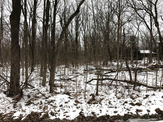 Lot Old Wolf Road, Mokena, IL 60448 (MLS #10967185) :: Jacqui Miller Homes