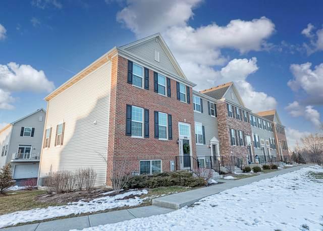 1499 Deer Pointe Drive, South Elgin, IL 60177 (MLS #10967538) :: The Wexler Group at Keller Williams Preferred Realty