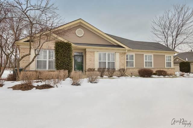 101 Enfield Lane, Grayslake, IL 60030 (MLS #10969661) :: BN Homes Group