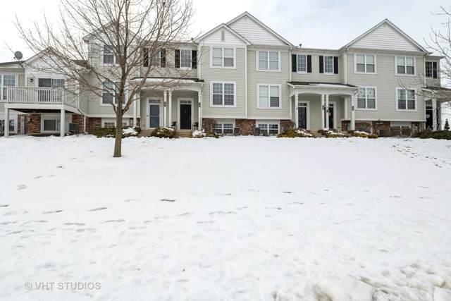 129 Terra Firma Lane, Volo, IL 60020 (MLS #10970621) :: Helen Oliveri Real Estate