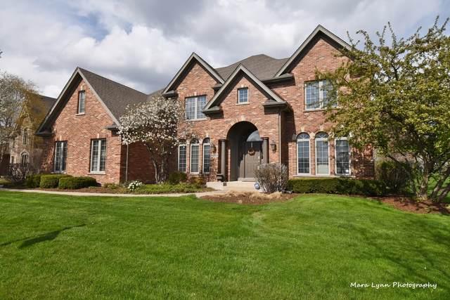 3N853 Walt Whitman Road, Campton Hills, IL 60175 (MLS #10971944) :: Ryan Dallas Real Estate