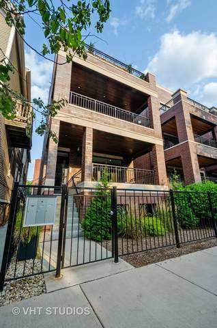 2511 N Southport Avenue #1, Chicago, IL 60614 (MLS #10974758) :: RE/MAX IMPACT