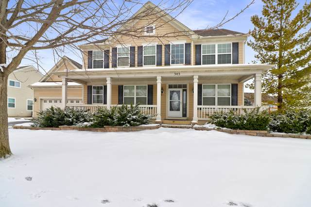 303 Comstock Drive, Elgin, IL 60124 (MLS #10974899) :: Ryan Dallas Real Estate
