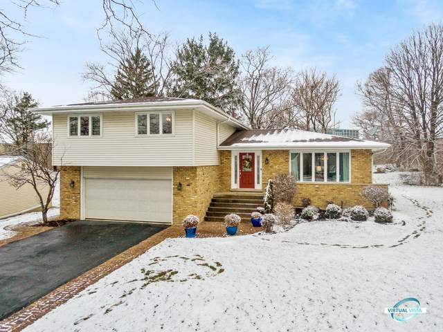 3724 Downers Drive, Downers Grove, IL 60515 (MLS #10976434) :: Suburban Life Realty