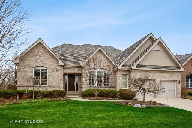 1126 Jonathan Drive, Inverness, IL 60010 (MLS #10979261) :: Jacqui Miller Homes