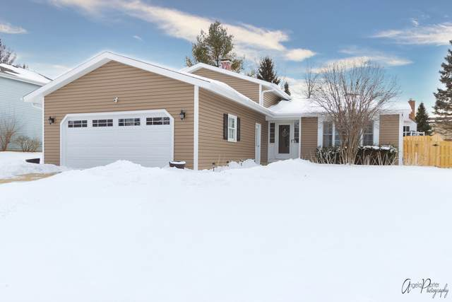 5419 Abbey Drive, Mchenry, IL 60050 (MLS #10981345) :: Jacqui Miller Homes