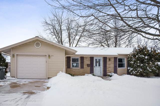 851 E Plate Drive, Palatine, IL 60074 (MLS #10983266) :: The Dena Furlow Team - Keller Williams Realty
