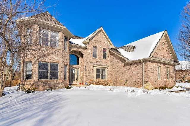 4 Persimmon Lane, South Elgin, IL 60177 (MLS #10983349) :: Jacqui Miller Homes