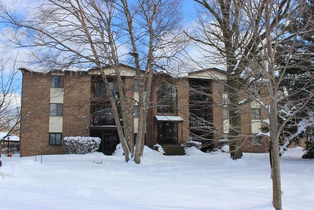 13426 W Circle Drive #308, Crestwood, IL 60418 (MLS #10983418) :: The Wexler Group at Keller Williams Preferred Realty