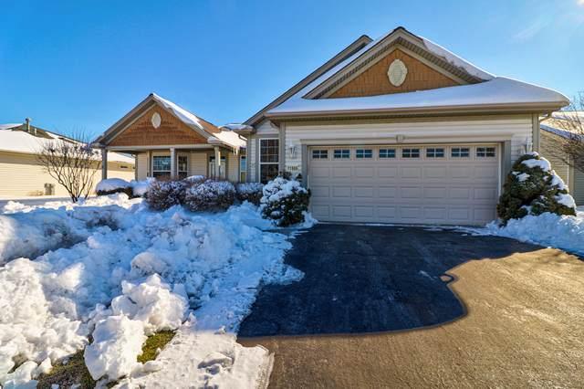 11966 Tuliptree Lane, Huntley, IL 60142 (MLS #10987055) :: Ryan Dallas Real Estate