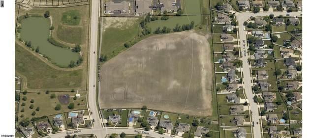 0 Southcreek Drive, Manteno, IL 60950 (MLS #10988177) :: Littlefield Group