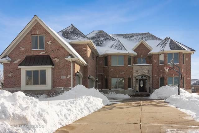 207 E Justins Court, Vernon Hills, IL 60061 (MLS #10988224) :: The Dena Furlow Team - Keller Williams Realty