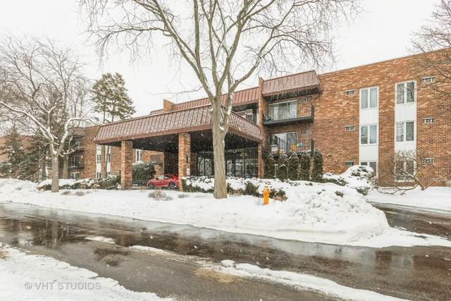 1121 W Ogden Avenue #253, Naperville, IL 60563 (MLS #10990790) :: Jacqui Miller Homes