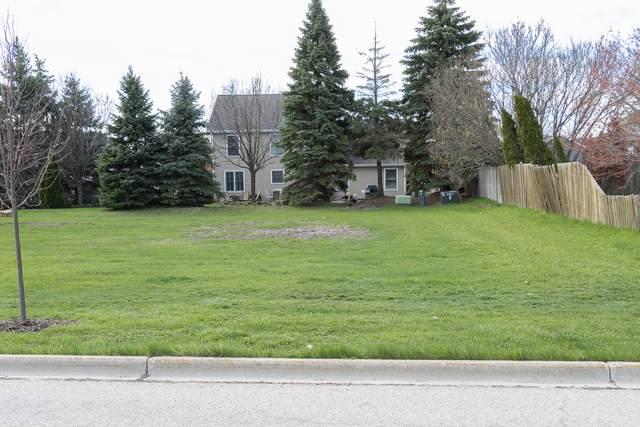 895 Waterford Cut, Crystal Lake, IL 60014 (MLS #10995393) :: Lewke Partners