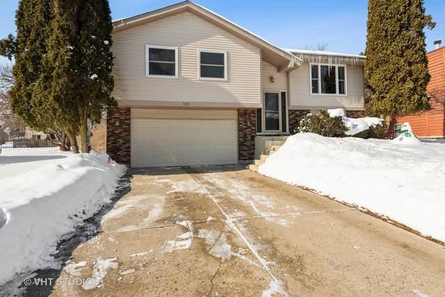 725 Elm Street, Algonquin, IL 60102 (MLS #10996426) :: Jacqui Miller Homes