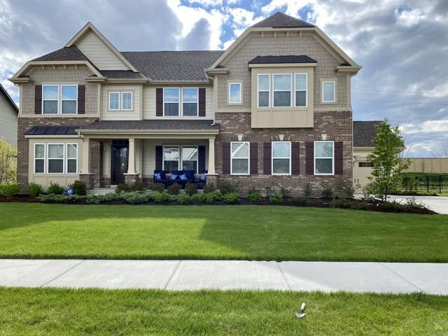 4607 Shumard Lane, Naperville, IL 60564 (MLS #10997812) :: RE/MAX IMPACT