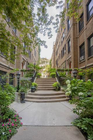 636 W Waveland Avenue 3D, Chicago, IL 60613 (MLS #10998711) :: Littlefield Group