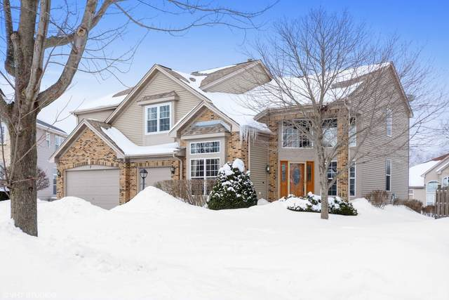 7 Greyshire Court, Algonquin, IL 60102 (MLS #10999475) :: The Spaniak Team