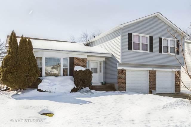 135 Warwick Drive, Glendale Heights, IL 60139 (MLS #11000790) :: Jacqui Miller Homes