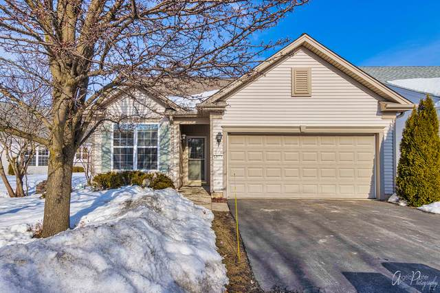 12564 Castle Rock Drive, Huntley, IL 60142 (MLS #11002709) :: The Dena Furlow Team - Keller Williams Realty