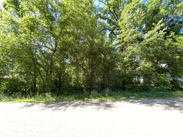 Lot 4 Block 3 Catalpa Drive, Wonder Lake, IL 60097 (MLS #11011570) :: BN Homes Group