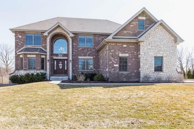 22659 Stanford Drive, Frankfort, IL 60423 (MLS #11019149) :: Helen Oliveri Real Estate
