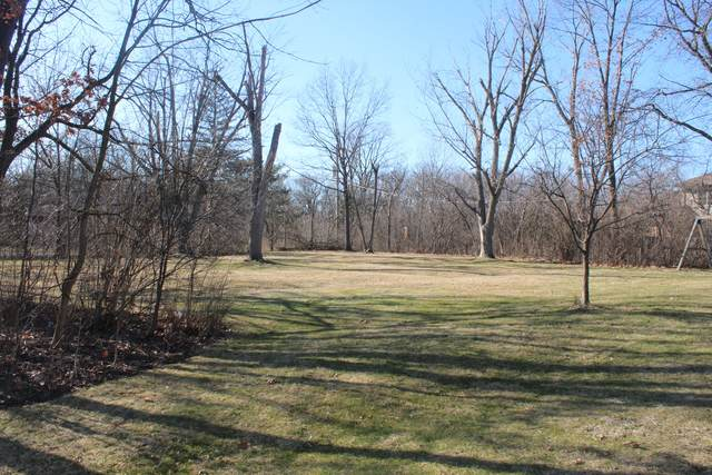 Lot 1 Aberdeen Drive, Crete, IL 60417 (MLS #11019245) :: Carolyn and Hillary Homes