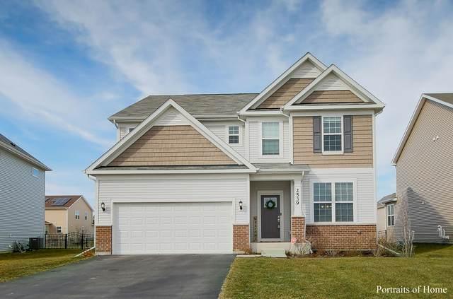 2539 Basin Trail Lane, Naperville, IL 60563 (MLS #11026650) :: Helen Oliveri Real Estate