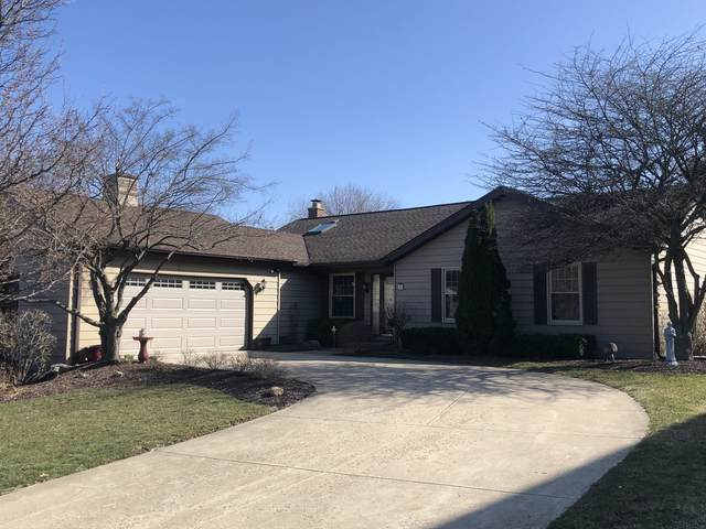 56 W Logan Street, Lemont, IL 60439 (MLS #11026883) :: RE/MAX IMPACT