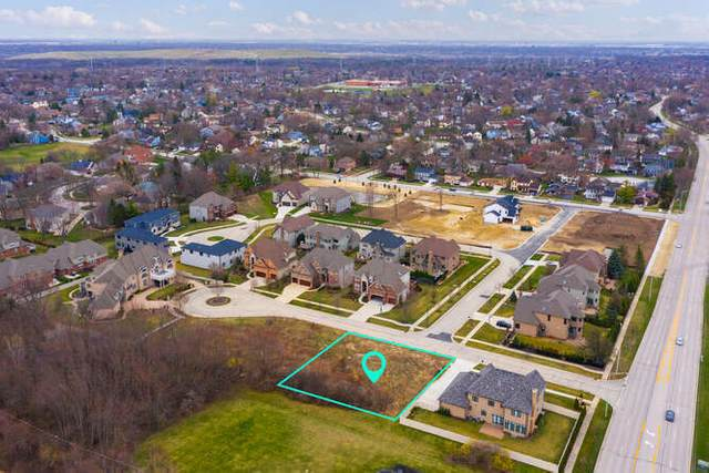 1507 Shiva Lane, Naperville, IL 60565 (MLS #11031483) :: BN Homes Group