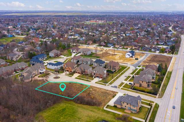 1509 Shiva Lane, Naperville, IL 60565 (MLS #11031490) :: BN Homes Group