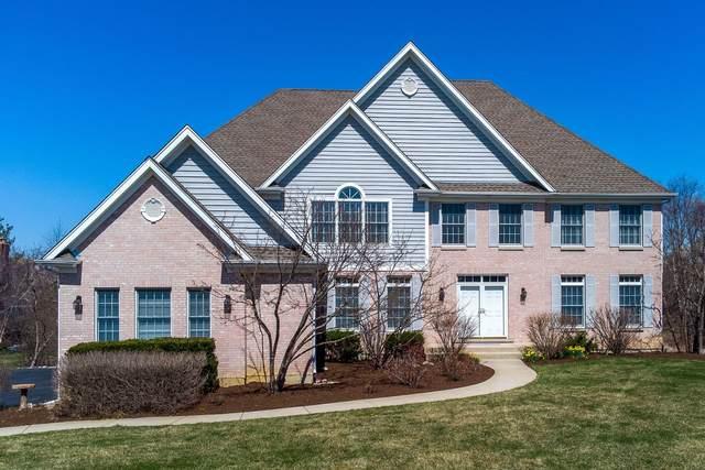 21594 W Morning Dove Court, Kildeer, IL 60047 (MLS #11034182) :: Helen Oliveri Real Estate