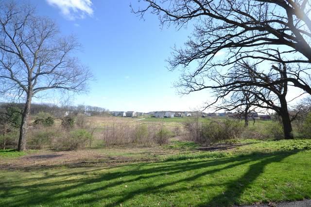 40W597 Old Mill Court, Elgin, IL 60124 (MLS #11036792) :: Littlefield Group