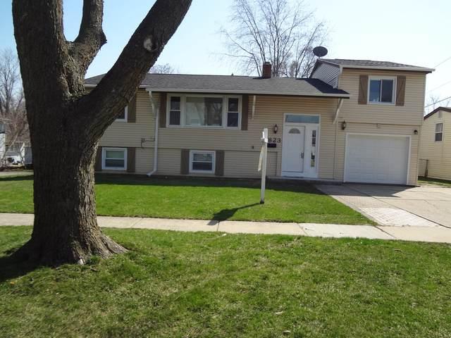 1823 Endicott Circle, Carpentersville, IL 60110 (MLS #11037436) :: The Dena Furlow Team - Keller Williams Realty