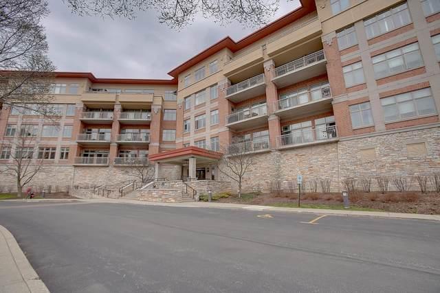45 Prairie Park Drive #301, Wheeling, IL 60090 (MLS #11040869) :: Helen Oliveri Real Estate
