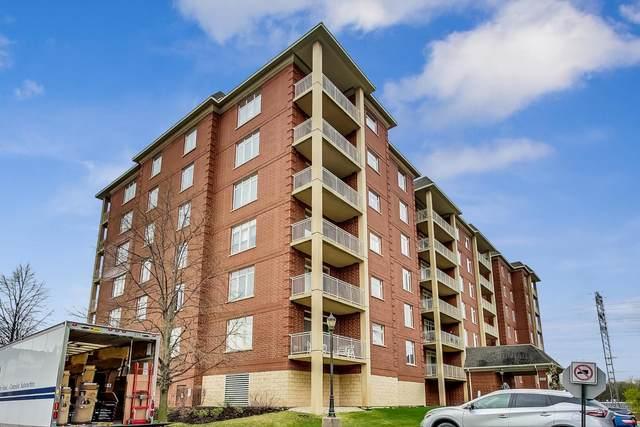 8400 Callie Avenue #505, Morton Grove, IL 60053 (MLS #11044155) :: Helen Oliveri Real Estate