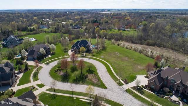 1033 Schonback Court, Batavia, IL 60510 (MLS #11045876) :: The Dena Furlow Team - Keller Williams Realty