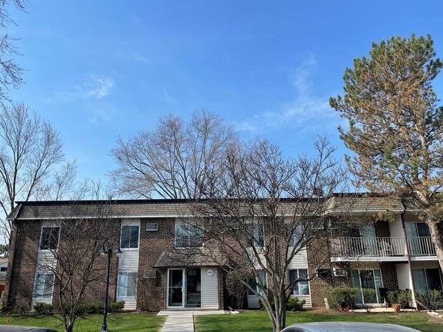 1077 Mill Creek Drive #201, Buffalo Grove, IL 60089 (MLS #11047389) :: RE/MAX IMPACT