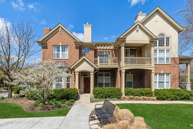 523 S Commons Court, Deerfield, IL 60015 (MLS #11054890) :: Littlefield Group