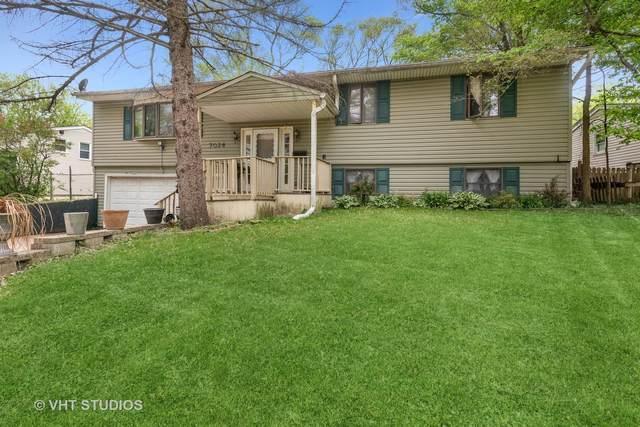 7024 Lowell Drive, Carpentersville, IL 60110 (MLS #11056352) :: Jacqui Miller Homes