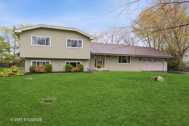 11125 Anvil Court, Naperville, IL 60564 (MLS #11059851) :: Ryan Dallas Real Estate
